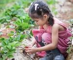 SABIC launches Sustainable Development Goals roadmap underlining global priorities