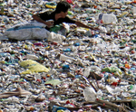 WHO urges for more research into microplastics and a crackdown on plastic pollution